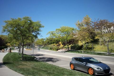 Acura  Diego on Real Deal Holyfield Honda Dc5 Integra Type R Oem Jdm Boss Sauce Wheels