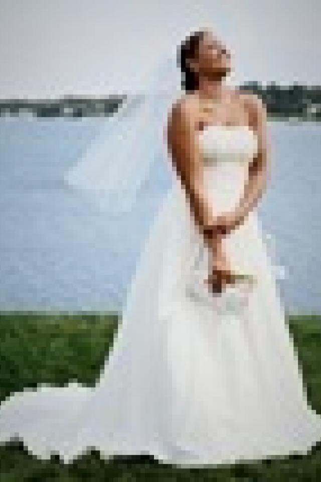 Size 22 Wedding Dress (never worn) Large Photo