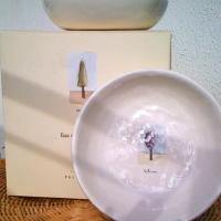 New Pottery Barn Teagarden Dishes Photo