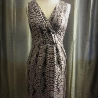 Banana Republic Dress Photo