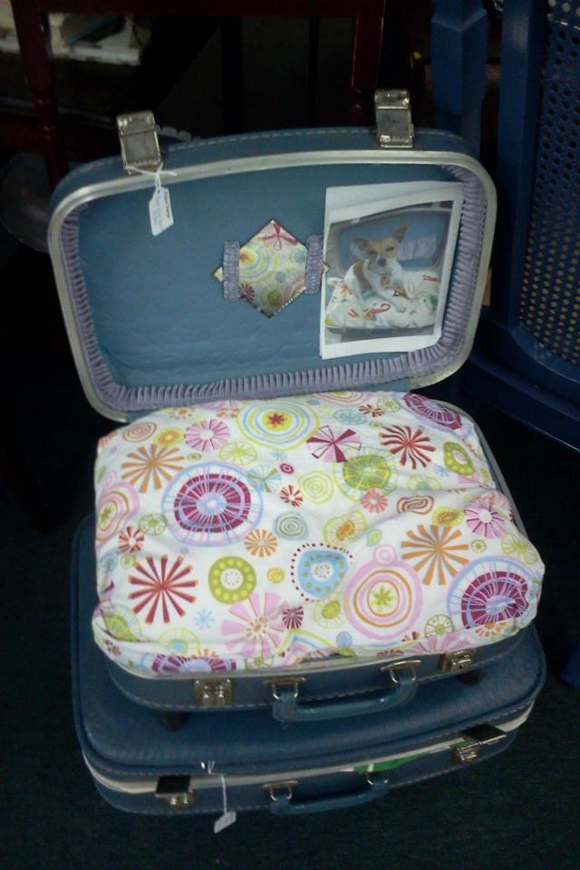 Vintage Suitcase Pet Bed Photo