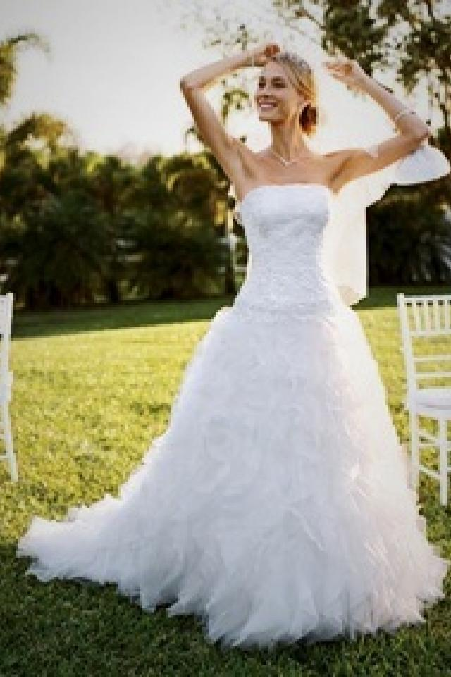 David's Bridal Gown Photo