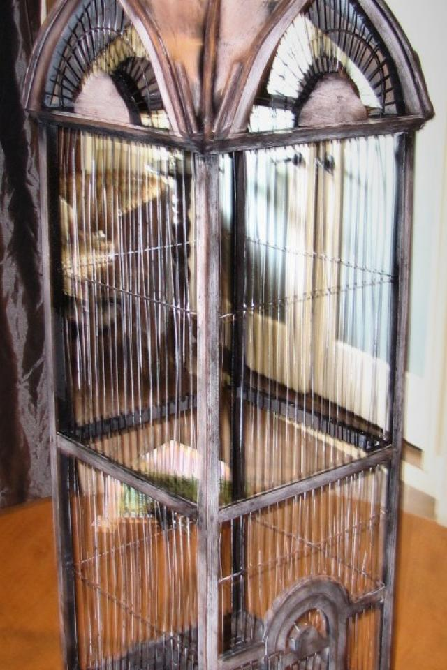 Vintage Bird Cage Photo