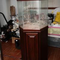 USED—42 Gal Oceanic Hex Aquarium w/Cherry Wood Stand  Photo
