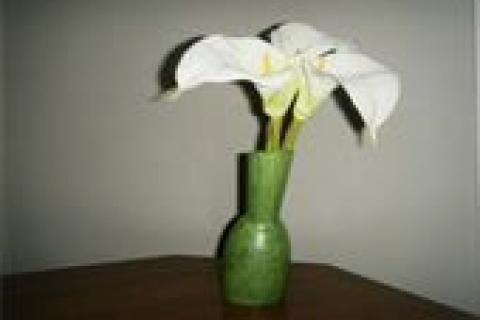 Lime Vase Photo