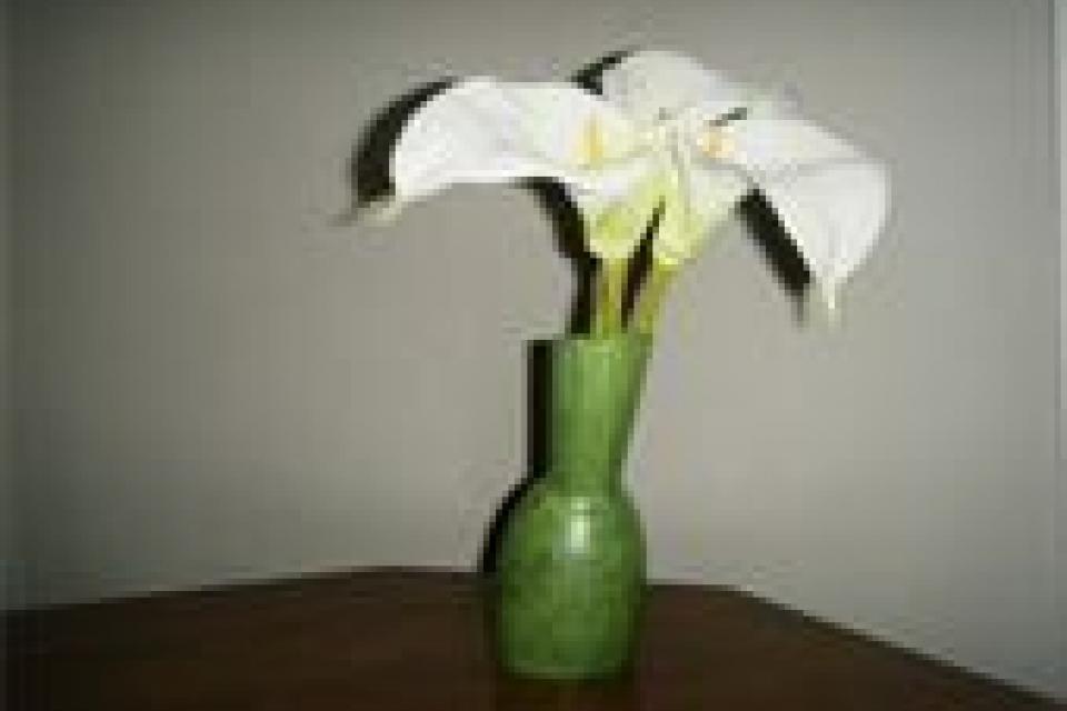 Lime Vase Large Photo