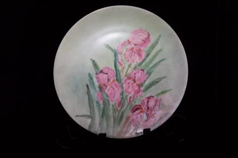 Pink Irises  Photo