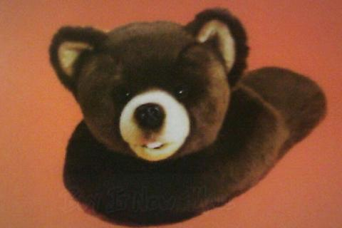 Teddy Bear fun Slippers, kids size one size fits all upto size 5 Photo