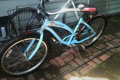Sweet Paul Frank bike Photo