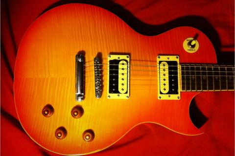 Xaviere Set Neck Les Paul Style Guitar Photo