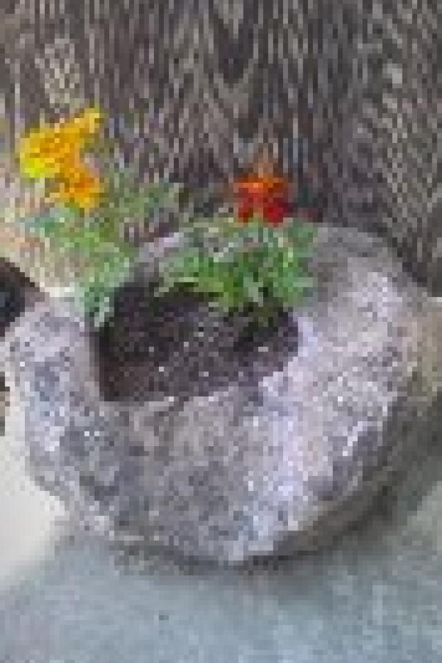 Flower Planter Photo