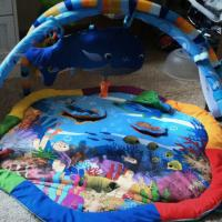 Baby Eintstine play activity yard Photo