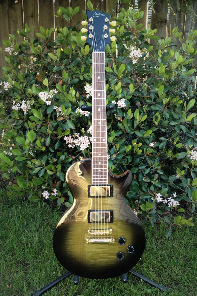 Chando Custom Made LP Guitar Photo
