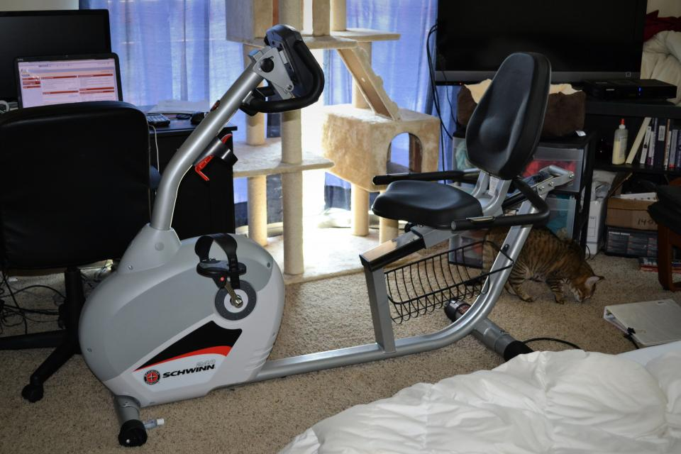 Schwinn 240 Exercise Bike - $300 Large Photo