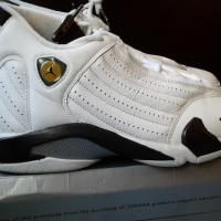Air Jordan 14 (XIV) Retro Chutney Photo