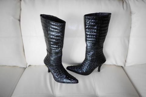 DivaGators-Ladies Boot by TaffyGators Photo
