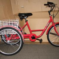 tricycle for adult  Photo