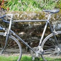 Large Bridgestone Touring/Road Bike Photo