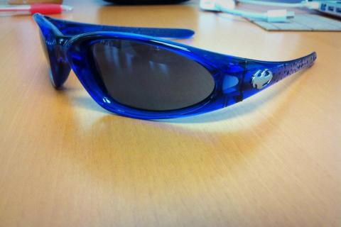 Dragon Sunglasses Photo