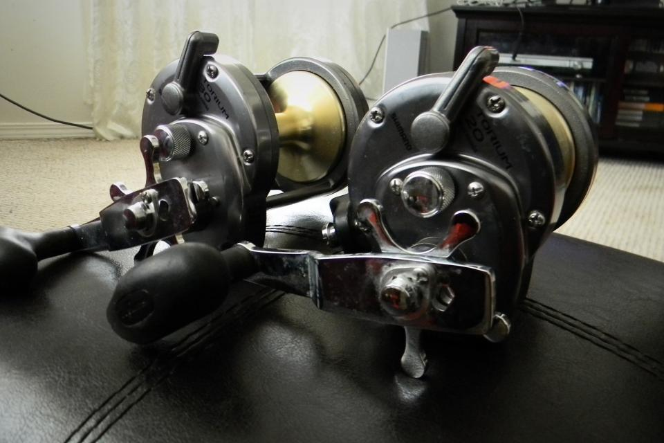 Shimano Torium 20 and 30 Large Photo