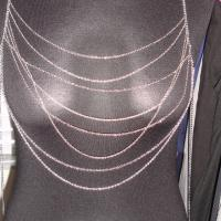 Silver Chain Shirt / Body Chain Photo