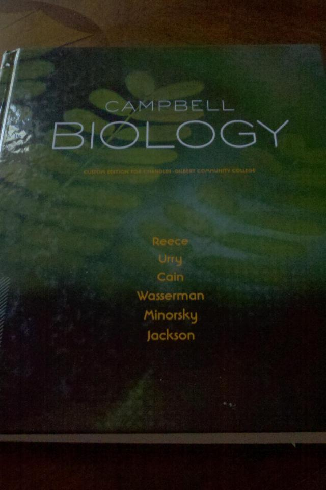 Campbell Biology College Textbook Large PhotoBiology Textbook Campbell