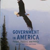 Government in America  Photo