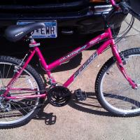 GIRLS PINK 15 SPEED MOUNTAIN BIKE,  Photo
