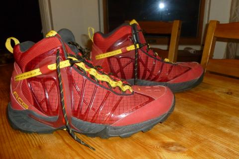 Nike Tallac Hiking Boots Size 12 Photo