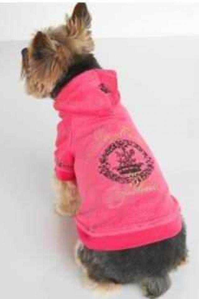 Gorgeous Juicy hoodie for dogs Photo