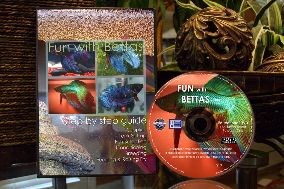 Fun with Bettas DVD - Step by Step Guide to Breeding Bettas Large Photo