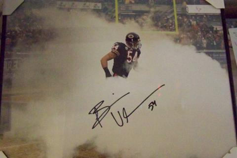 BRIAN URLACHER SIGNED 16x20 PHOTO FRAMED..JSA CERTIFICATE OF AUTHENTICITY Photo