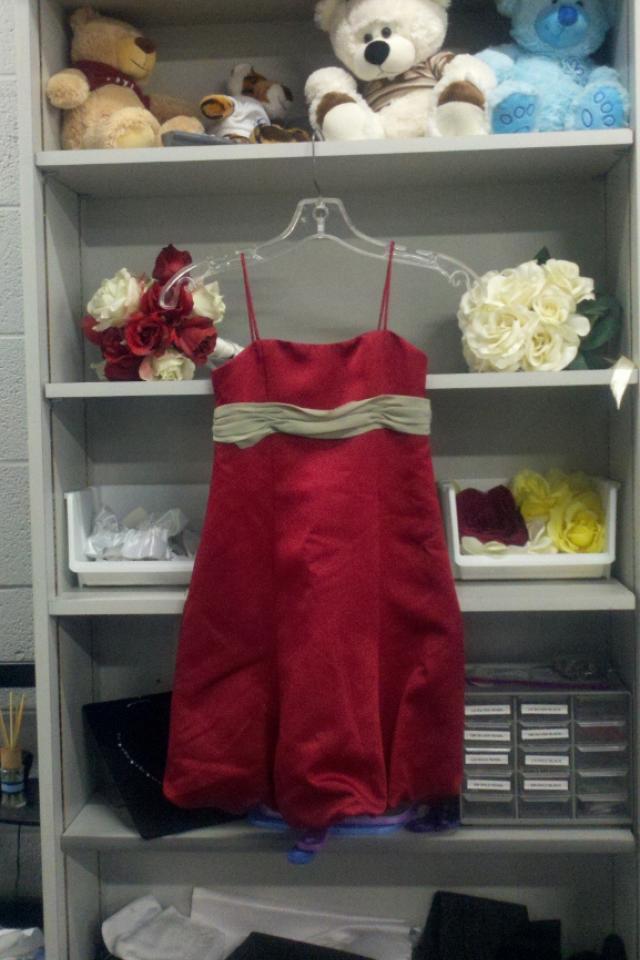 NEW Claret/Celedon Dress Sz 6 Photo