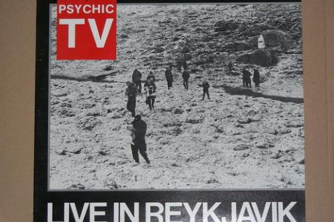 PHYSHIC T.V. 'LIVE IN REYKJAVIK' LP Photo