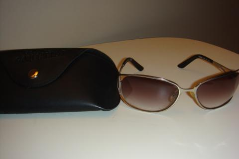 Chloe Sunglasses with Case Photo