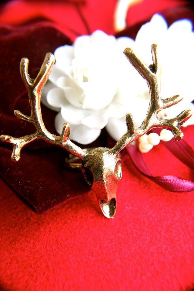 Antlers for All Season Ring Photo