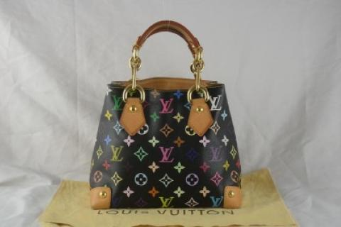 LOUIS VUITTON Multicolor Audra Photo