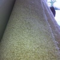 Brand New 1,200 +sq ft Beige carpet Photo