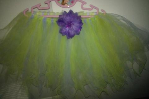 tinker bell themed tutu!!! Photo