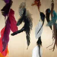 NEW Lot of 4 Unique Feather Earrings  Photo