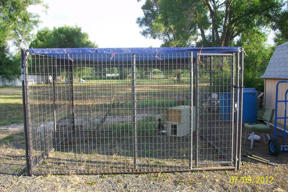 HUGE OUTDOOR KENNEL  Large Photo