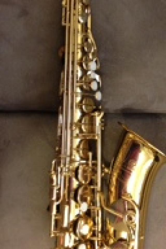 Saxophone Beginner/Intermediate Starter Kit Photo