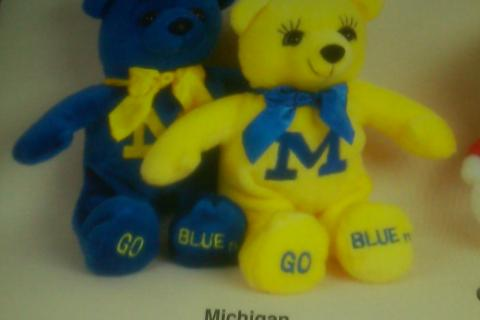 Michigan Bean Bag Plush Bear Photo