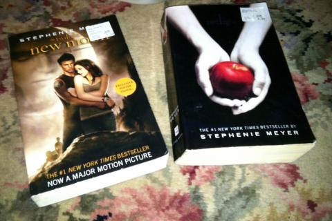 Twilight and New Moon Novels Photo