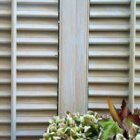 Charming Hand Painted Vintage Coastal Shutters Photo