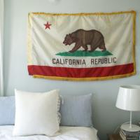 Vintage Schoolhouse California Flag Photo