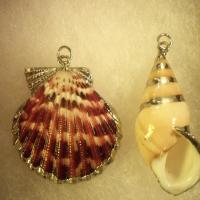 HANDMADE SHELL PENDANTS  Photo
