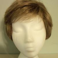 SYNTHETIC HAIR WIG NEVER WORN Photo