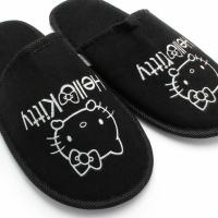 Hello Kitty Slipper Photo