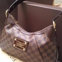 Louis Vuitton Damier Thames Photo